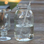 Can Moonshine Go Bad? Everything You Need To Know About Moonshine