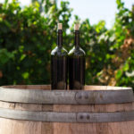 Making Muscadine Wine - The Seven Steps To Muscadine Heaven